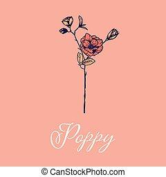 Wild Poppy flower design isolated object