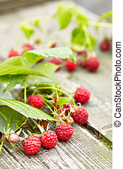 Wild raspberry on rustic wooden outdoor table
