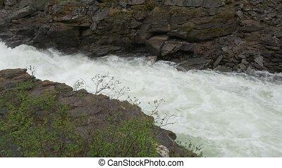 Wild River Stream In Norway - Native Version - Native...