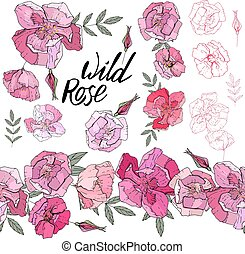Wild rose elements. Isolated objects and endless border