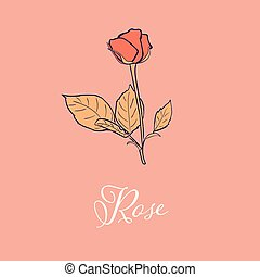 Wild Rose flower design isolated object