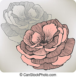 Wild rose flower, hand-drawing. Vector illustration.