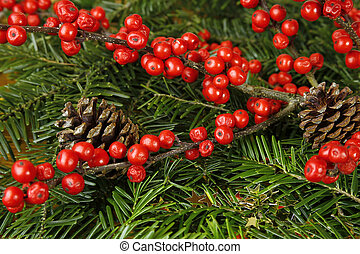 wild rose fruits, cones and fir tree. christmas background