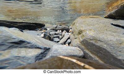 Wild Salmon Eggs Lowe River Valdez Alaska Fish Spawing -...