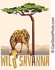Wild Savanna theme with giraffe and tree