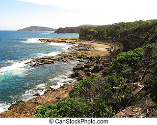 Wild shore in australia with cliffs, trees and ocean