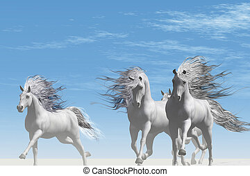 WILD SIDE - A herd of Andalusian white horses gallop...