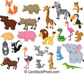 wild, spotprent, dier, verzameling