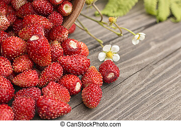 Wild strawberries on rustic wooden background