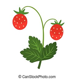 wild strawberry flat simple illustration