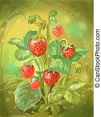 Wild strawberry illustration