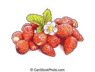 Wild strawberry with flower.