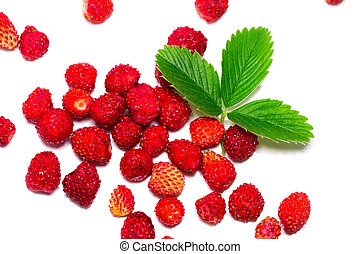 wild strawberrys with leaves. Isolated on a white background