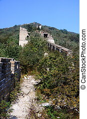Wild the Great Wall