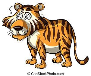 wild, tiger, augenpaar, schwindlig