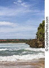 Wild tropical beach with a rock