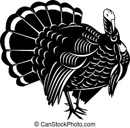 Wild Turkey Retro - Illustration of a wild turkey done in...