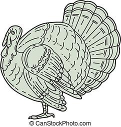 Wild Turkey Side Mono Line