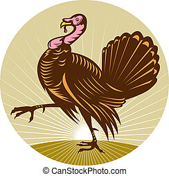 Wild turkey walking side view done in retro woodcut style...