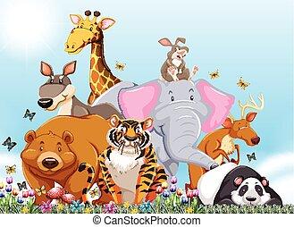 wild viele tiere arten abbildung vektor clipart suche illustration zeichnungen und eps. Black Bedroom Furniture Sets. Home Design Ideas