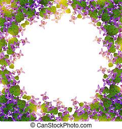 border of wild violet over white background