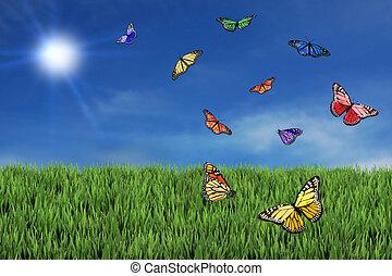 wild, vlinder, kosteloos