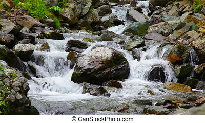Wild waterfall in summer forest - Stream of small waterfall...
