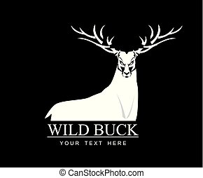 wild, weißes, rehbock