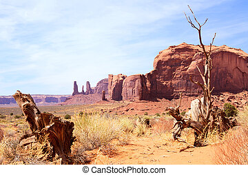 Wild West - Dramatic landscape in Monument Valley Navajo...