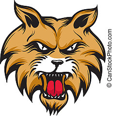 Wildcat - An Illustration of an angry firocious wildcat.