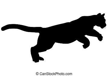 Wildcat - Black wild cat silhouette on white background