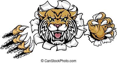 wildcat, enojado, plano de fondo, garras, progreso