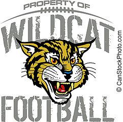 wildcat, football, disegno, mascotte