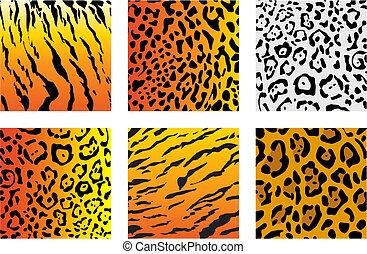 Set of wildcat fur for design or ornate