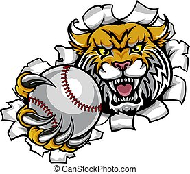 Wildcat Holding Baseball Ball Breaking Background