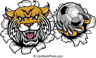 Wildcat Holding Soccer Ball Breaking Background