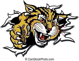 wildcat, mascot