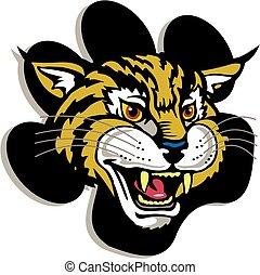 wildcat, mascota
