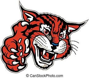 wildcat, pata, mascota