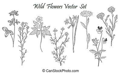 wilde bloemen, set