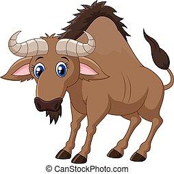 wildebeest, caricatura, animal