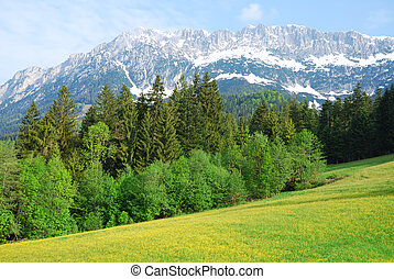 Wilder Kaiser mountains in the alps of Austria