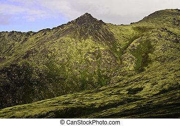 Wilderness Alaska