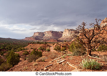 Wilderness  - Desert view of Capitol Reef National Park