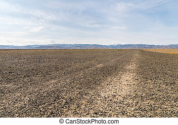 wilderness trail through the gravel surface ground in xinjiang