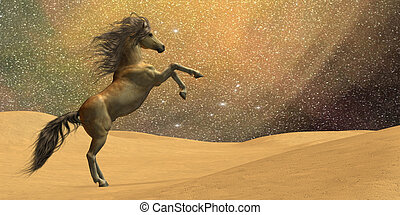 Wilderness Horse