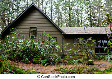 Wilderness Vacation Cabin in Forest