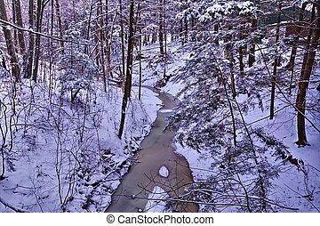 Wilderness Winter