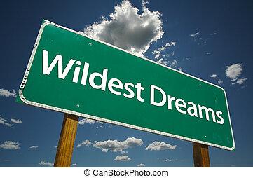 wildest, sinal, sonhos, estrada