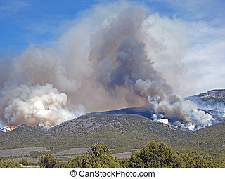 Wildfire - A fire burns through forest and range land on a ...